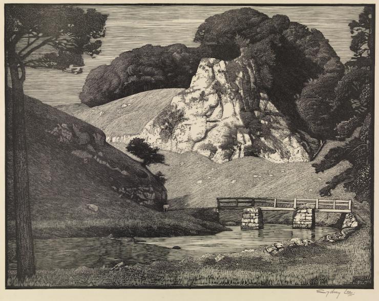 Sydney Lee Limestone Rock Dovedale